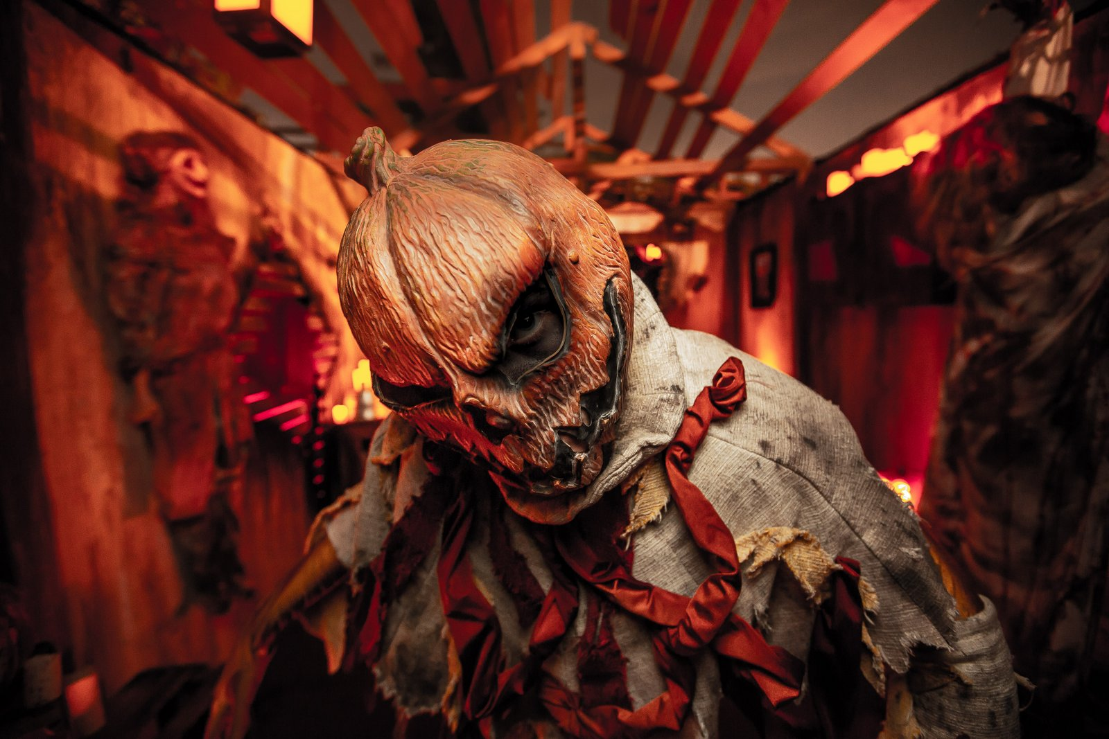 Halloween 2020 Return To Its Roots Knott's Scary Farm Goes Back To Its Roots For 2019   Inside Universal